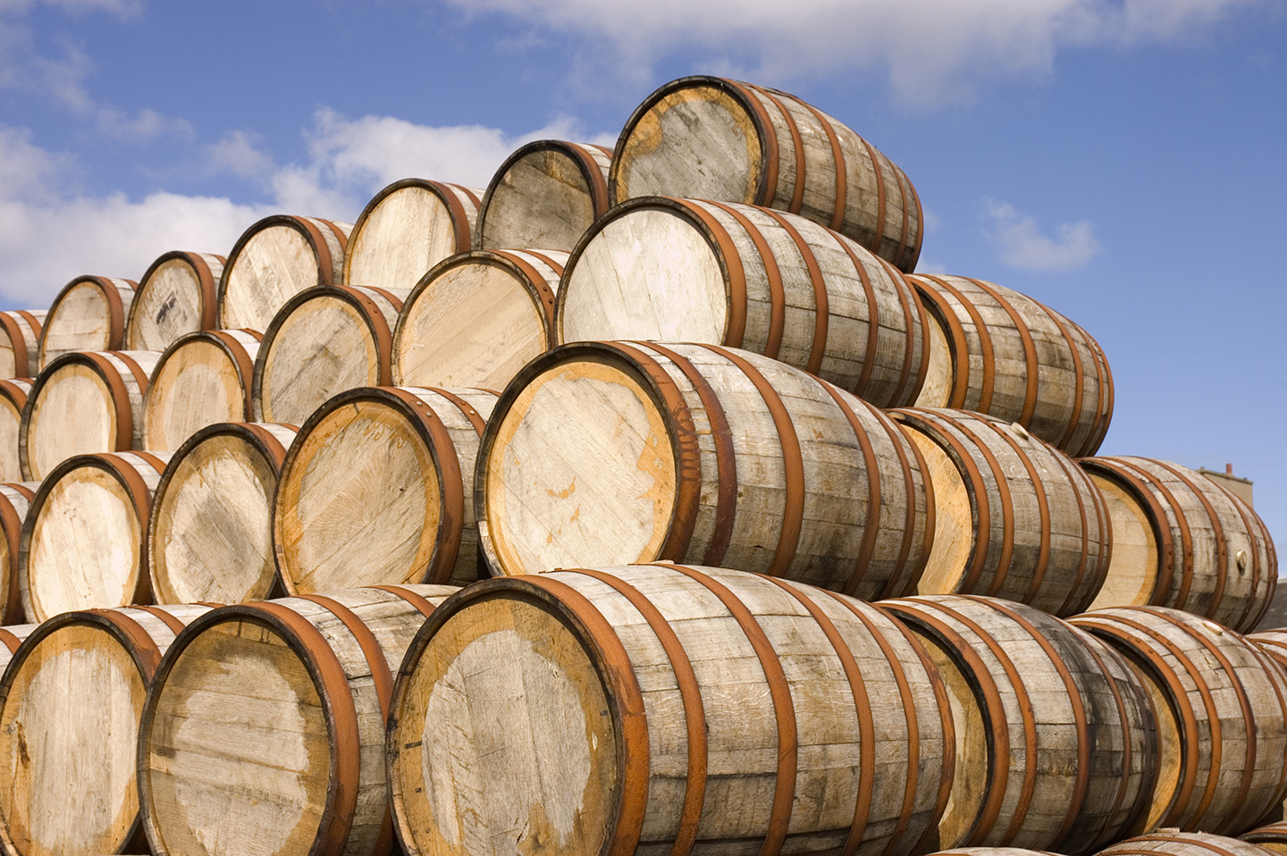 Getting Started As Whisky Cask Investor | Photo Of Whisky Cask Investments
